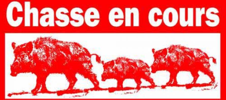 BATTUES DE CHASSE 2019