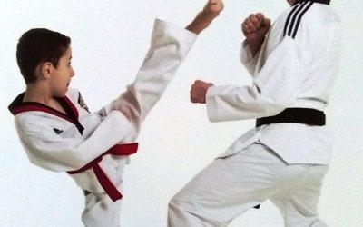 Millau.-Taekwondo-Stéphenne-Vidal.