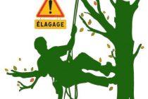 TRAVAUX D'ÉLAGAGE – CIRCULATION PERTURBÉE